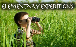 Elementary Expeditions