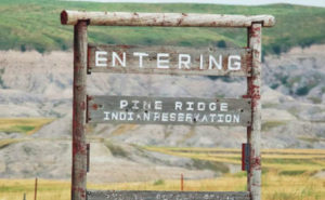 pineridgesign